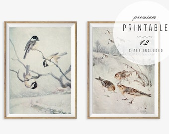Winter Wall Art - Kitchen Printables, Entryway Wall Art, Set of 2 Prints, Holiday Decor, Chickadees in Snow Storm, Sparrows in Snow, 11x14