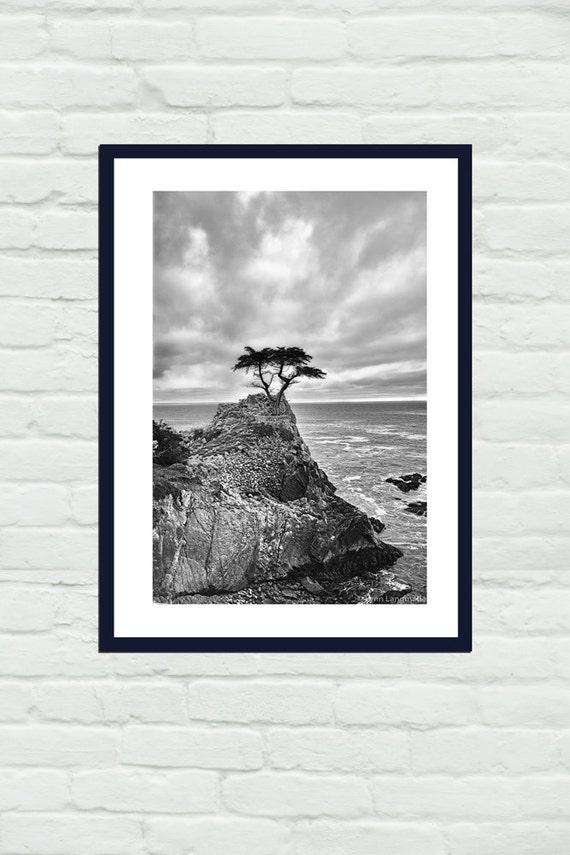 Schwarz-weiß-Fotografie Landschaften Baum Pazifischen Ozean   Etsy