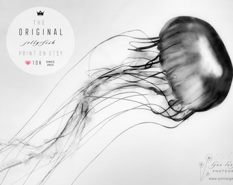 Jellyfish Print Black and White - Extra Large Wall Art 40x60, House Warming Gift, Living Room Wall Art 30x40, Beach House Decor 20x30 gray