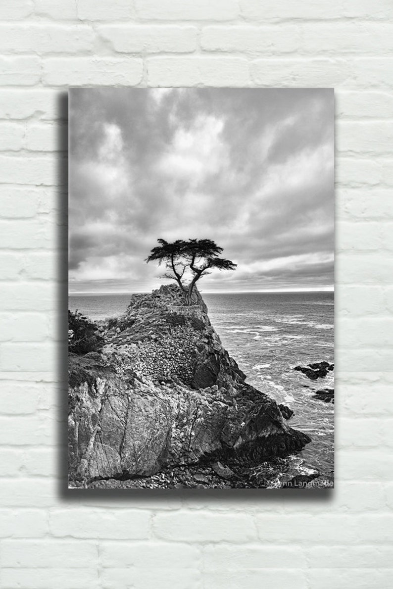 Black and white canvas wrap photography tree 16x24 canvas ocean black and white landscape 24x36 canvas ocean decor large tree art never