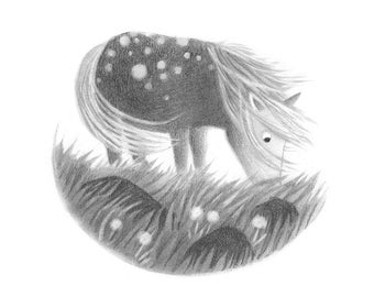 Spotted Pony - black and white 5x5 print of pencil drawing