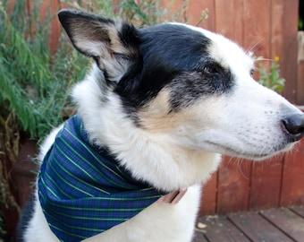 """Dog Bandana  Gren and Blue - Seahawk Dog Bandana Size Medium  - Dog Scarf - Girl Dog Bandana Dog Apparel - Puppy Bandana  9"""" by  30"""""""