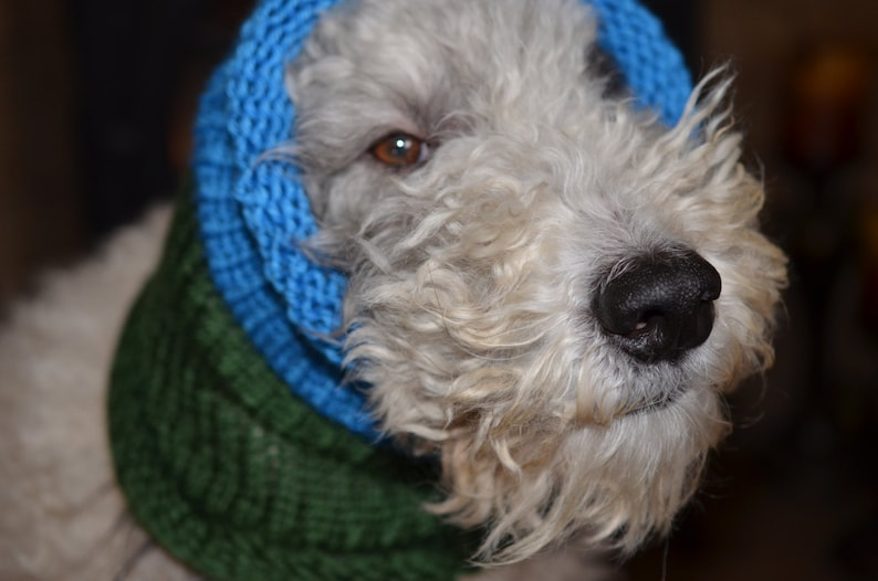 14 Circumference by 18 long  Fits a dog with up to 20 Neck Knit Dog ScarfCowl  Green and Blue  Size Medium Dog Clothing