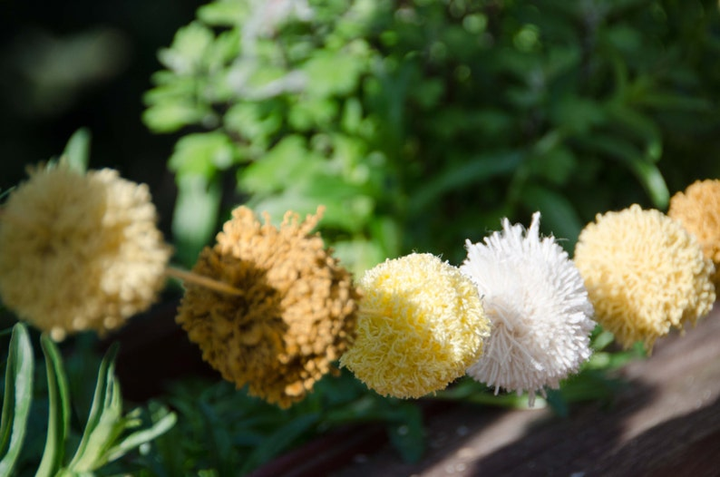 2 Pom Poms Earth Colors Photography Backdrop Party Decoration Pom Pom Garland 20 Pom Pom Garland Pom Banner