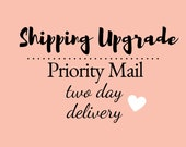 Priority 2 - 3 Day Shipping USA Only