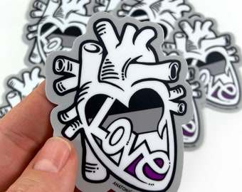 Asexual Flag - Anatomical Heart Pride Sticker