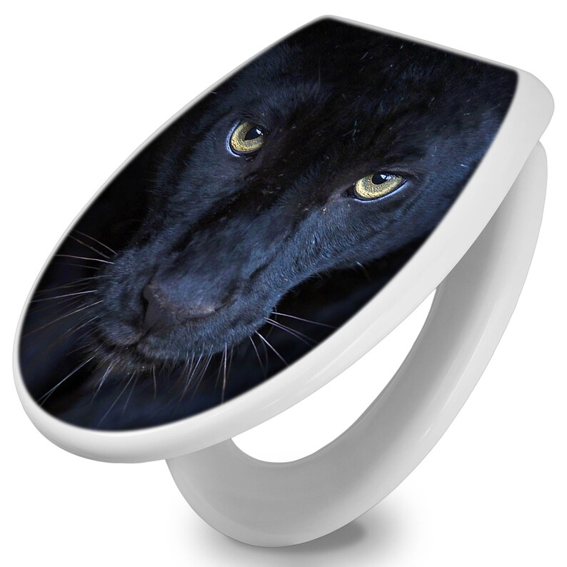 Terrific Toilet Seat With Lowering Automatic And The Motif Nora Alphanode Cool Chair Designs And Ideas Alphanodeonline