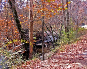 Little Pigeon River, Pigeon Forge, Tennessee, view by the roadside IMG no.0020-1