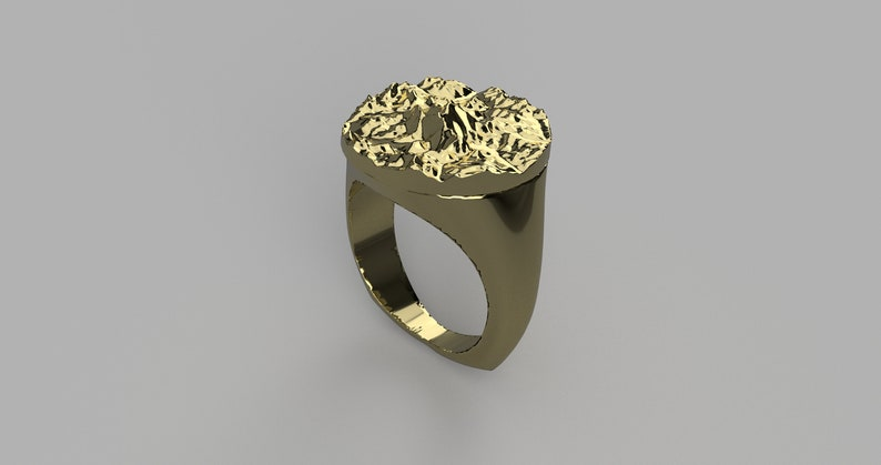 Custom Topographical Ring image 0