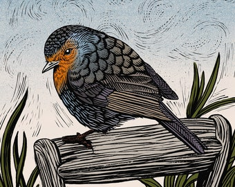 Robin - Limited Edition Philosophy of Birds Giclee Print