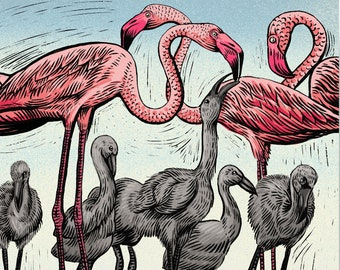 Flamingos   Philosophy of Birds Illustration Set: Signed, Limited Edition Artist Giclée Print -  A flamboyance of pink flamingos with chicks