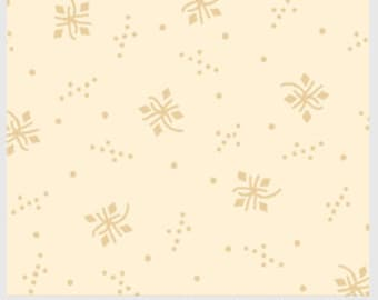 Apple Cider Spiral Star - AC15 00184NE