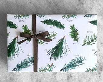 Christmas Evergreen Wrapping Paper, holiday gift wrap, flat sheet paper, illustrated Christmas tree varieties  || Favorite Story