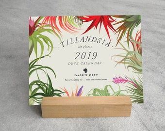 2019 Desk Calendar, Air Plants | Air Plants Desk Calendar 2019 | Tillandsia