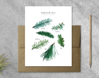 Boxed Set of 8 Evergreen Greeting Cards with Kraft Envelopes   Christmas Cards, Set of Cards
