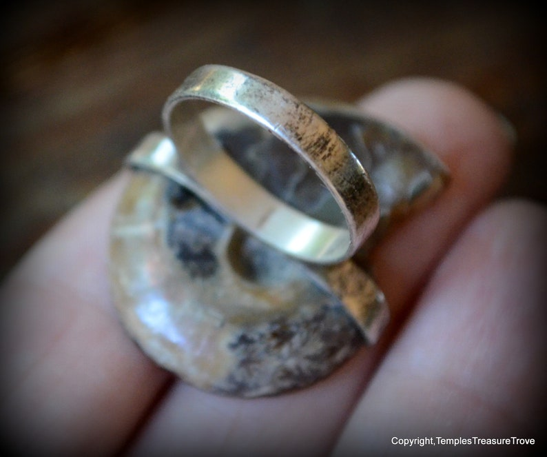 Ammonite and sterling ring size 6 ~ Fibonacci Spiral Ring ~ Fossilized Nautilus Shell Ring ~ Sacred Geometry Sterling Ring ~ Unisex Ring