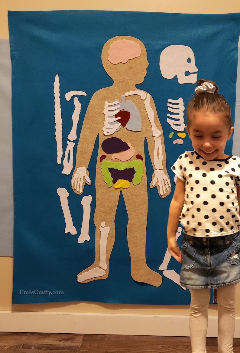 Human Body Felt Wall // Montessori Learning // Kids ages 3 4 image 0