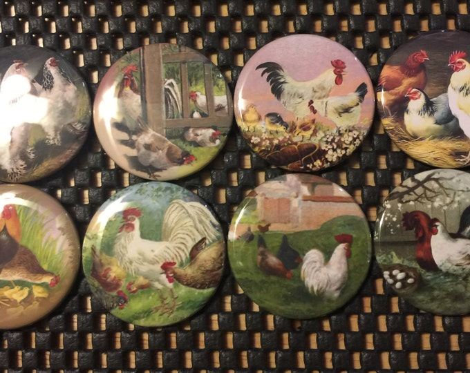 8 Vintage Rooster, Chickens Fridge Magnets, Pinbacks or flatbacks buttons Vintage Pictures SET 2  Many sizes available, you choose!