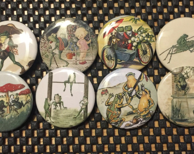 8 Frog fridge magnets, toads, frogs, reptiles, SET 6 with vintage pictures of frogs and toads