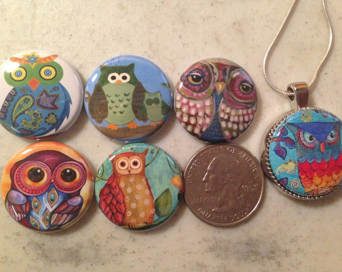 6 owls, hoot owls flatback buttons and 1 Magnetic Interchangeable pendant and chain Set 4