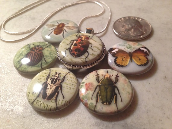 1 Magnetic Interchangeable pendant, with 6 flatback buttons with pictures of bugs, beetles, butterflies