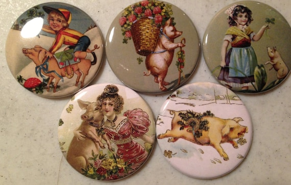5 Pig Fridge magnets or pinbacks SET 4 w/Vintage pictures Pigs, hogs, 1.5 inch