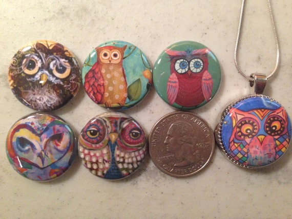 6 owls, hoot owls flatback buttons and 1 Magnetic Interchangeable pendant and chain Set 1