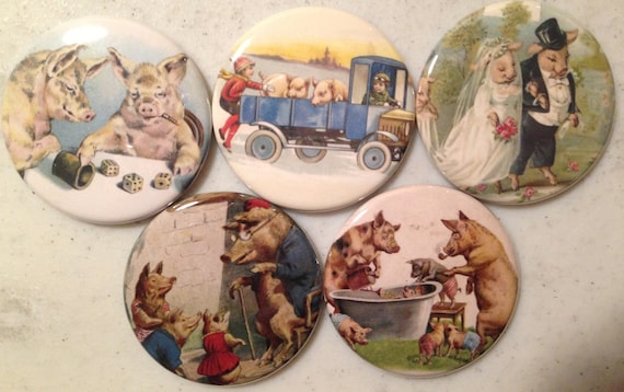 5 Pig Fridge magnets or pinbacks SET 2 w/Vintage pictures Pigs, hogs, 1.5 inch