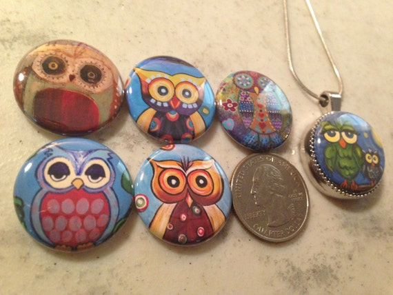 6 owls, hoot owls flatback buttons and 1 Magnetic Interchangeable pendant and chain Set 2