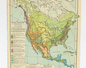 North America Map, 1948 map of USA, Canada, Cuba, office decor, atlas map, map poster, vegetation map