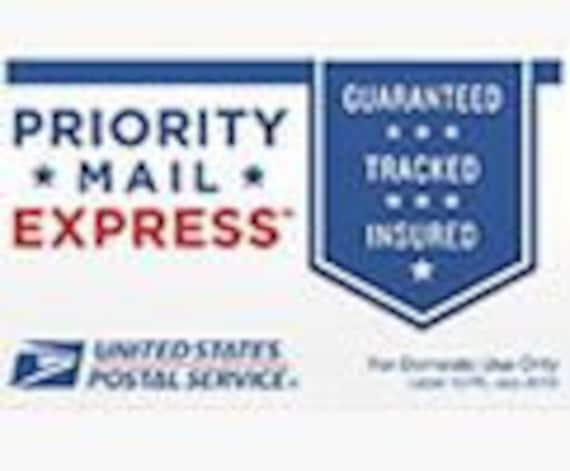express mail shipping charge