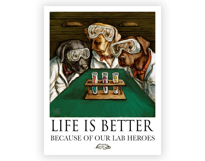 Heroes in the Lab Life is Better with our Lab Heroes image 0