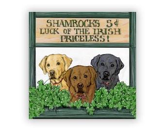 Luck of the Irish, Labrador Retriever Shamrock Stand