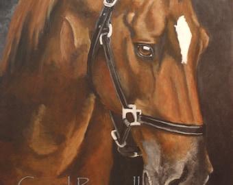 """Original Painting of 'Nadia' the Quarter Horse 16""""x 20"""""""