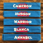 20 Qty CUSTOM Green and Navy and White Personalized Ninja Warrior Headbands Due Before 9/30