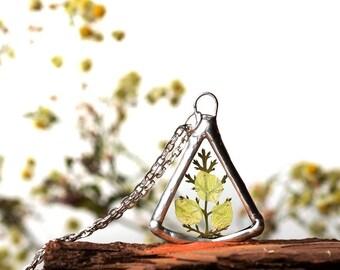 Terrarium Necklace, Forest Jewelry, minimal plant necklace, pressed flower pendant, bridesmaid glass necklace, nature necklace