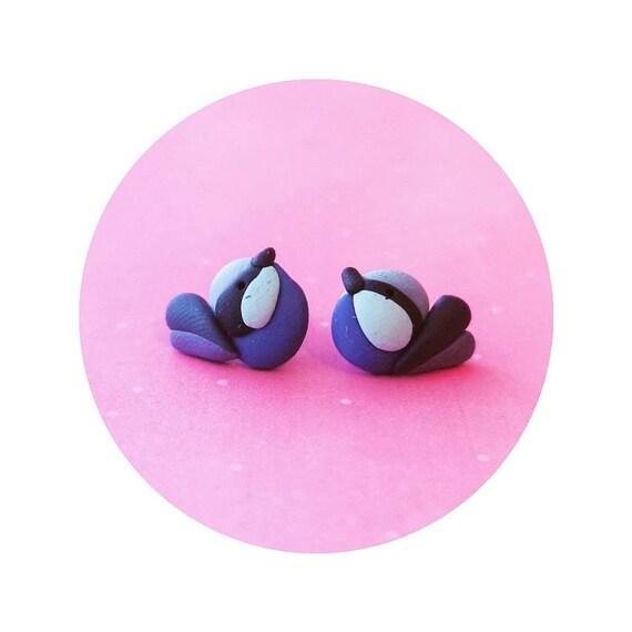 Blue Fairy Wren earrings