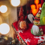 Christmas Shoot for Sept 2019 flourish members only