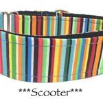 Bright Striped Martingale Dog Collar, Bright Dog Collar, Stripe Martingale Collar, Boyish Martingale, Boy Dog Collar, Scooter