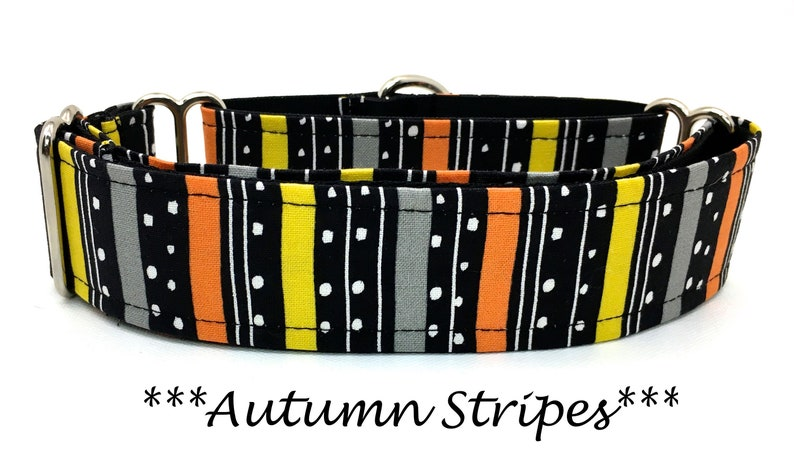 Martingale Dog Collar Halloween Dog Collar Martingale image 0