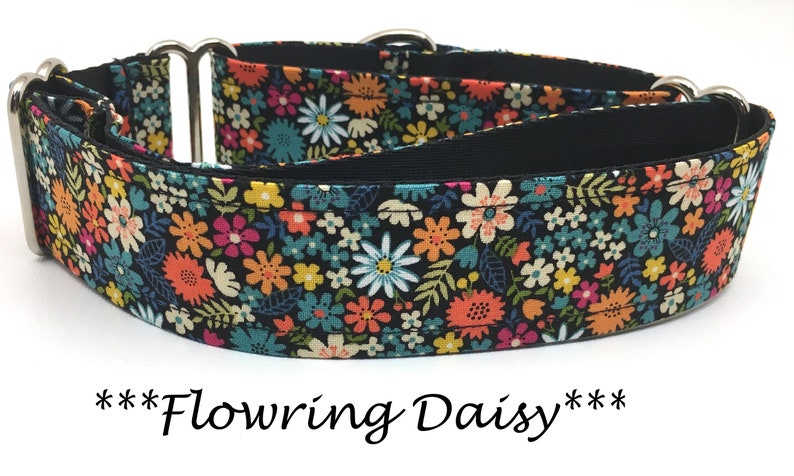 Martingale Dog Collar Martingale Buckle Collar Daisy Dog image 0
