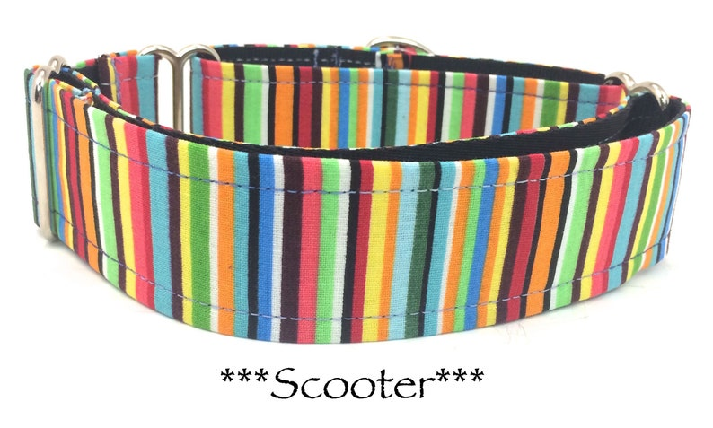 Bright Striped Martingale Dog Collar Bright Dog Collar image 0