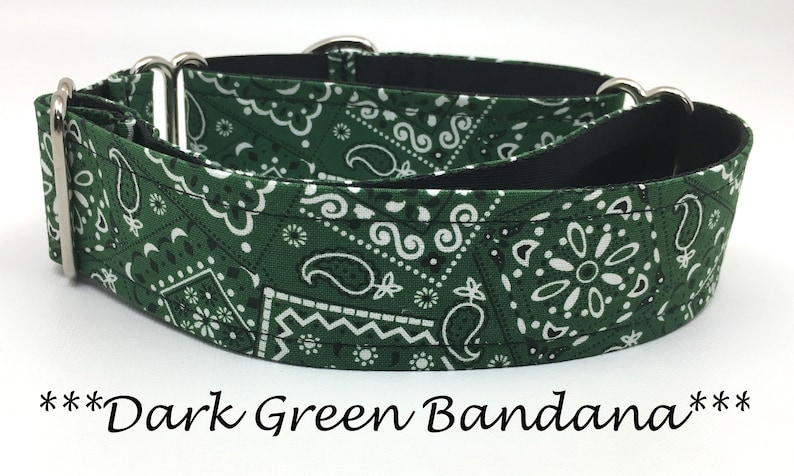 Martingale Dog Collar Martingale Buckle Collar Dark Green image 0