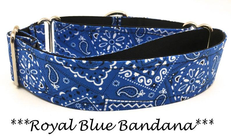 Martingale Dog Collar Martingale Buckle Collar Royal Blue image 0