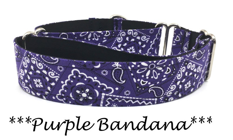 Martingale Dog Collar Martingale Buckle Collar Purple image 0