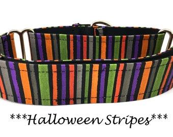Martingale Dog Collar, Halloween Dog Collar, Martingale Halloween Dog Collar, Halloween Dog Collar, Halloween Stripes