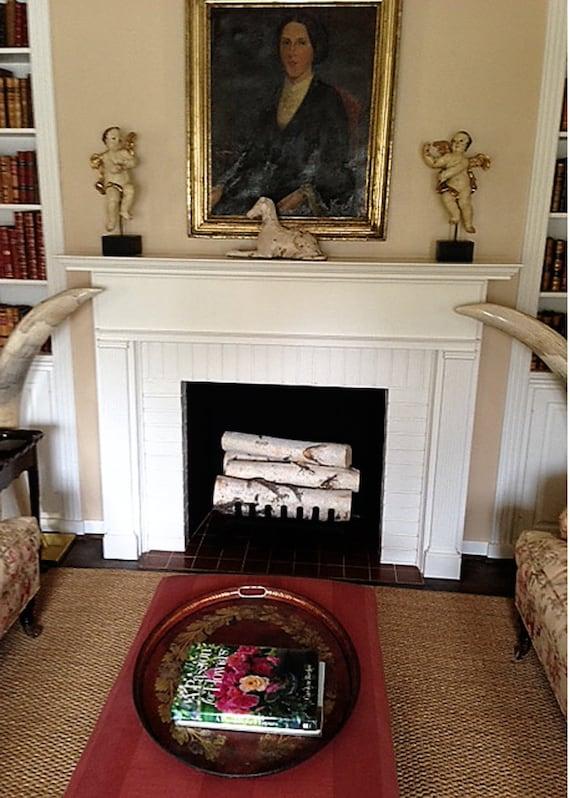White Birch Log Set For Fireplace Etsy