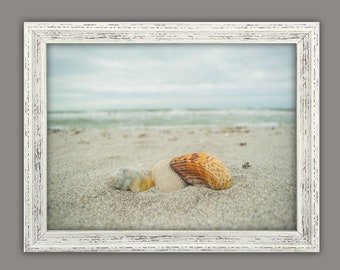 Ocean and shell Photo (Digital Download)