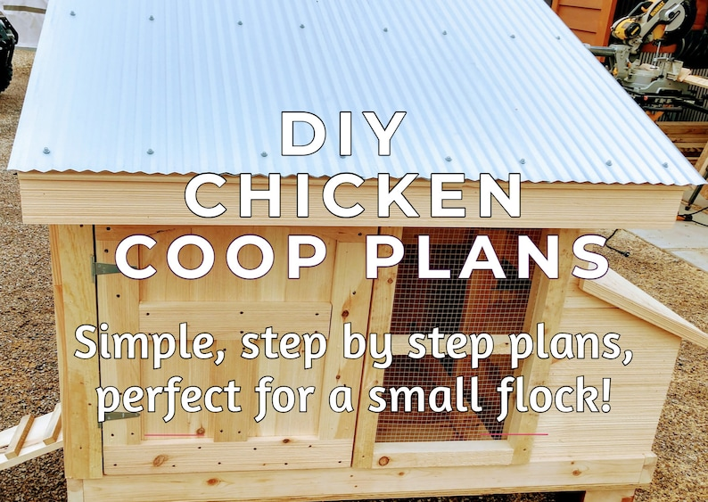 Small Flock Chicken Coop Plans  Simple Strong And Easy To image 0