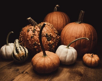 Happy Fall to all of our Visitors!! Enjoy this beautiful season!!